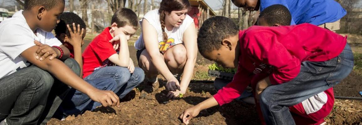 Volunteering in community garden